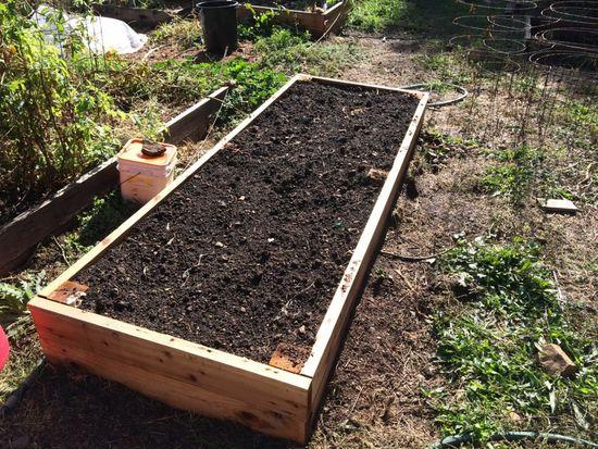 почва для чеснока