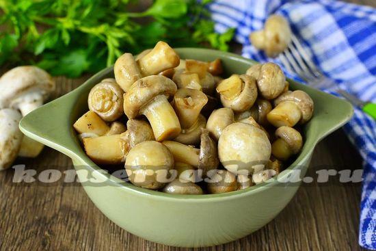 охладить грибы в холдильнике