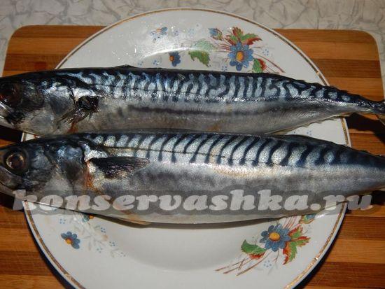 Моем рыбу