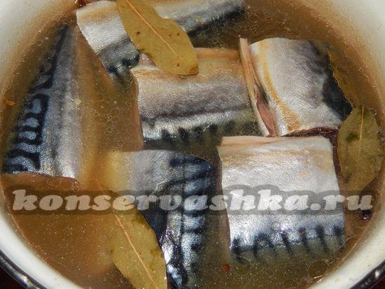Кладем рыбу в рассол