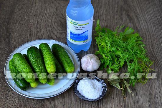 Ингредиенты для приготовления быстрых маринованных огурцов