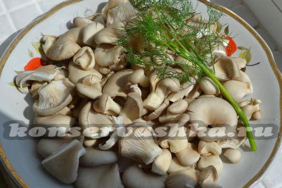 грибы промыть и нарезать