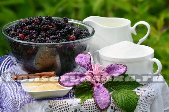 Ингредиенты для приготовления мармелада из шелковицы