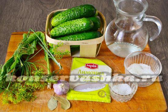 Ингредиенты для приготовления огурцов с лимонной кислотой на зиму