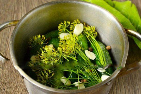 Малосольные огурцы: рецепт быстрого приготовления в кастрюле
