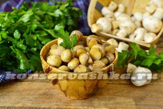 рецепт быстрых маринованных грибов