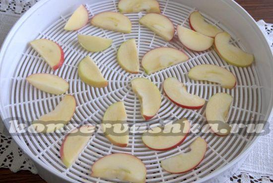 Просушиваем плоды и выкладываем на решетку сушилки