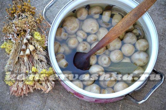 Отваренные грибы кладут в кипящий маринад и проваривают еще 2-3 минуты