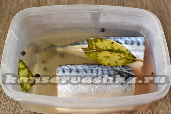 Кладём рыбу в полученный рассол