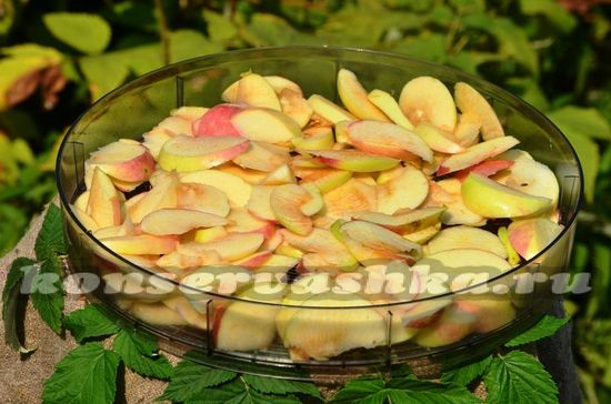 кладем яблоки в лоток для сушии