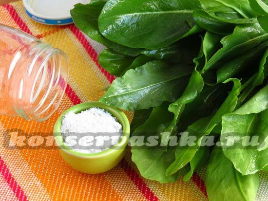 Ингредиенты для засолки щавеля