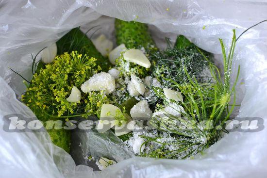 добавляем соль, зелень, чеснок