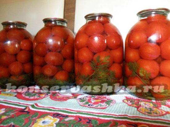 Помидоры с морковной ботвой на зиму: рецепты