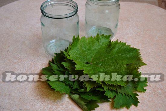 Ингредиенты для приготовления виноградных листьев сухого засола на зиму