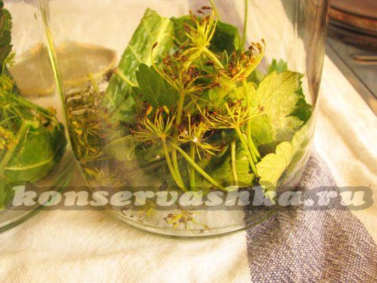 Бросаем в банки листья черной смородины и вишни