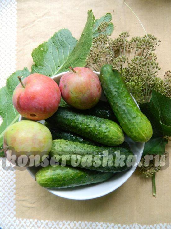Ингредиенты для приготовления огурцов с яблоками