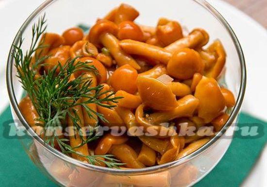 Маринованные грибы на зиму: рецепты