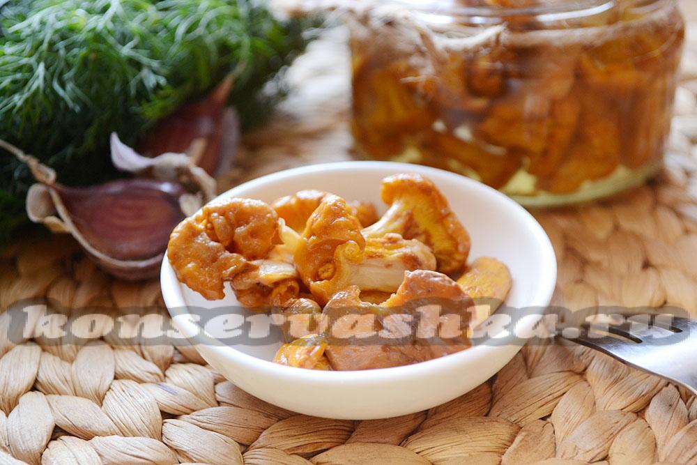 Лисички консервированные рецепт на