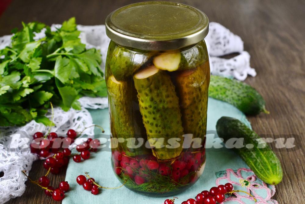 Огурцы с красной смородиной на зиму рецепты