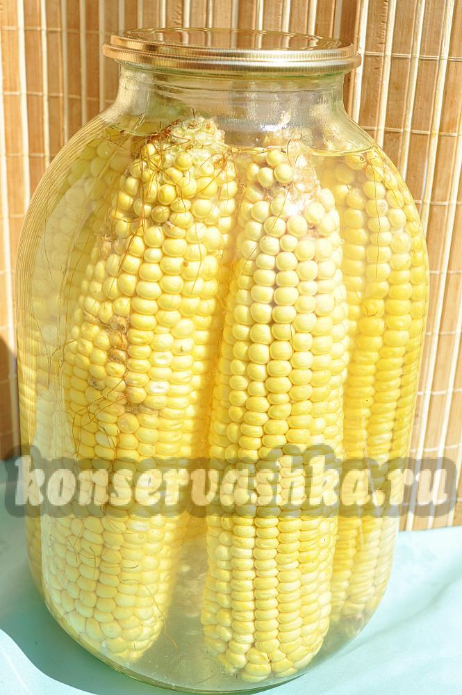 Как кукурузу в домашних условиях на зиму