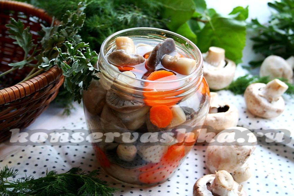 маринованные брюшки лосося рецепт быстрого приготовления